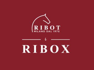 """Sai cosa sono """"i RIBOX"""" di Ribot?"""